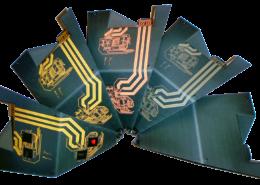3D-MID - Prodution Steps